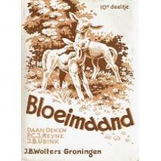 Bloeimand 10 - Wilde Kastanje
